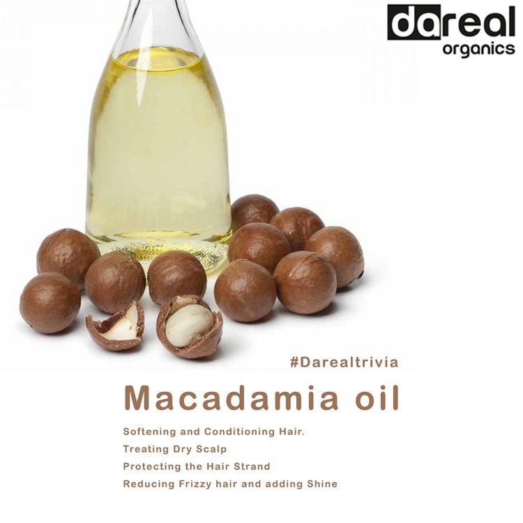 Benefits Macadamia Oil - darealorganics - darealorganics | ello