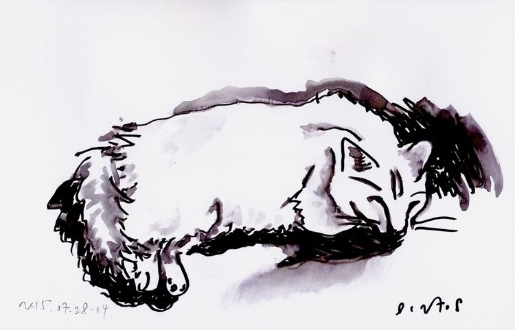 Mime Cat July 28, 2015 - 04 25 - istvanocztos | ello