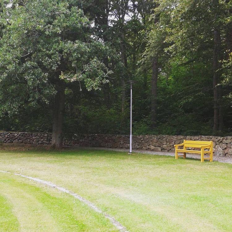 Tid för vila ock eftertanke  - Skogskyrkogårdar.se - skogskyrkogardar | ello