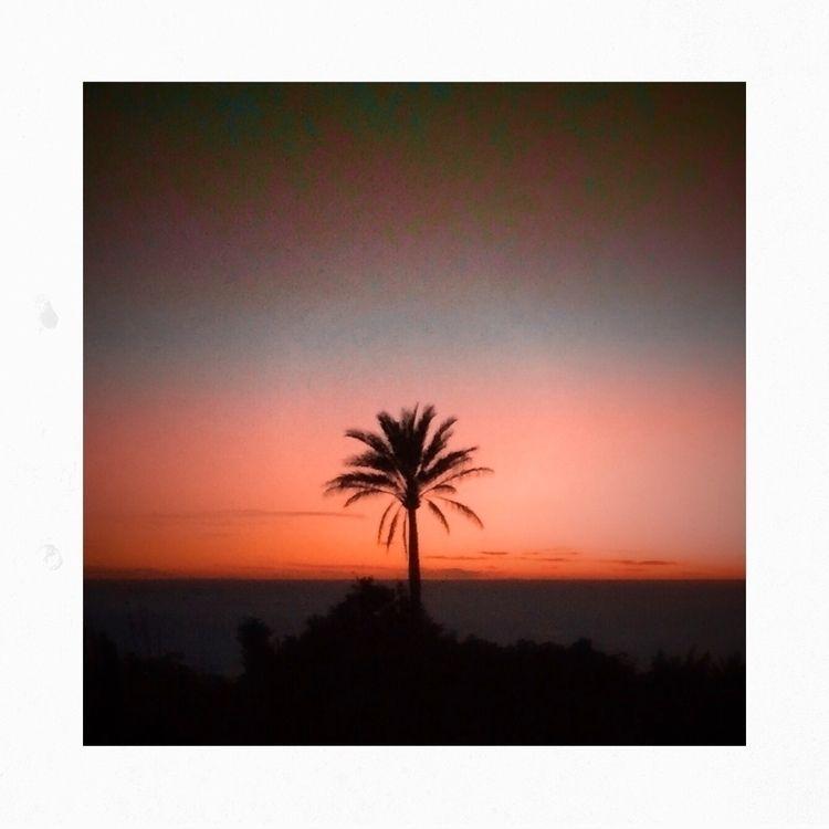 HEART - outdoor, nature, sunset - yogiwod   ello