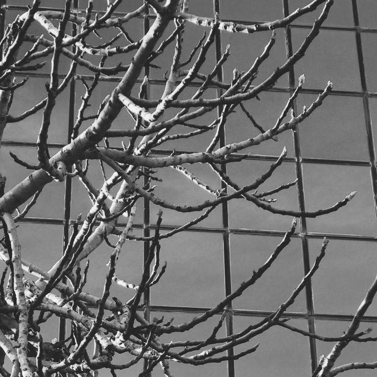 deep emptiness hide - photography - georgemlb | ello