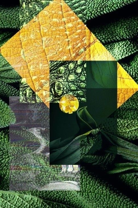 identity - collage, digital, art - pourpose | ello