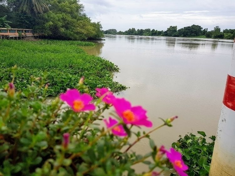 Mekong Delta - vietnam, river, tranquility - sezzyharris | ello