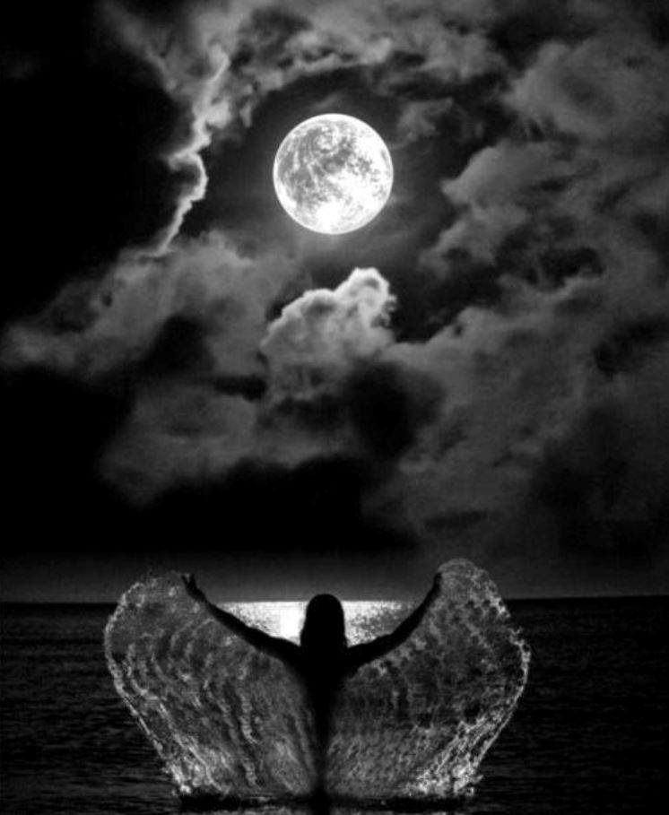 Gnight sweet dreams , lovelies - lolosbri   ello