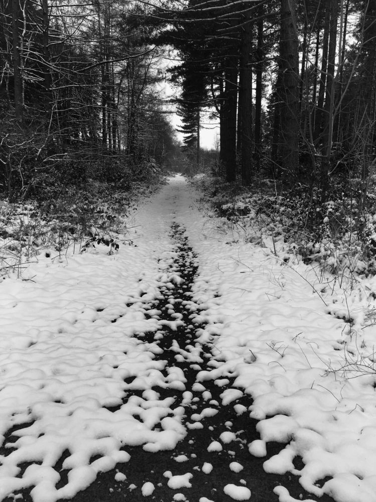 long road - lisarmitchellphotography | ello