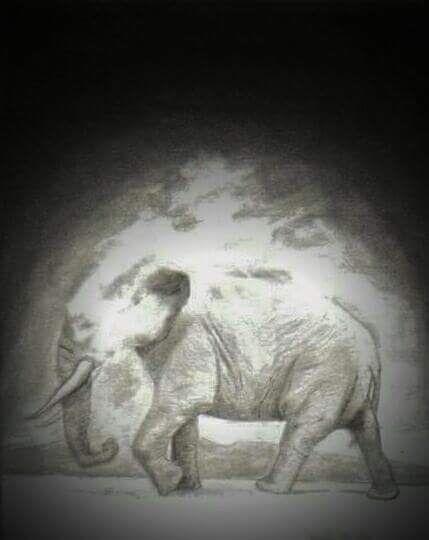 Terra sola elephanti Hedy 2o10  - hedyg0042 | ello