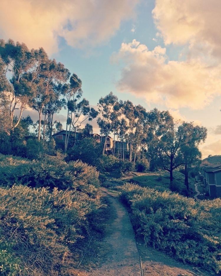 perspectives landscape photogra - icarlton | ello