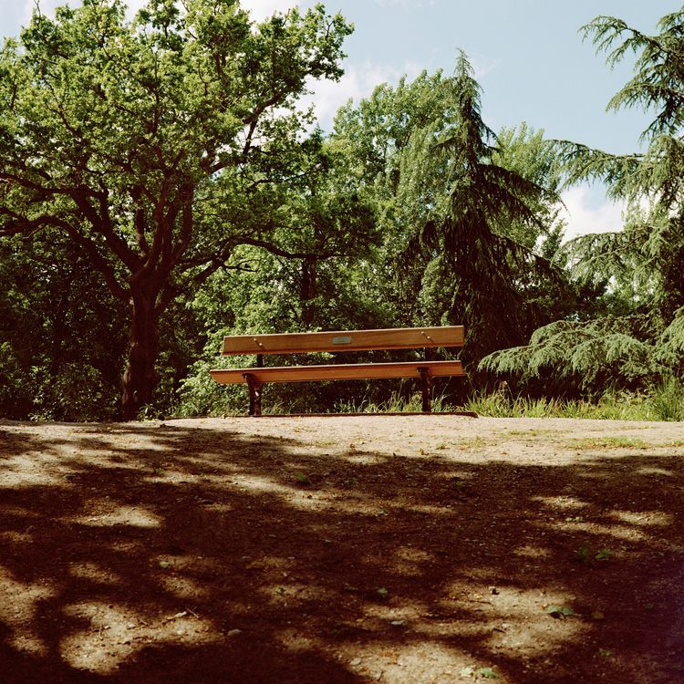 Lonely bench Crystal Palace Jun - deannawojciechowska | ello
