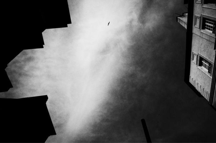 streetphotography, blackandwhite - milkandfj | ello