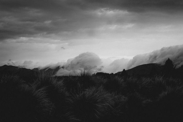 blackandwhitephotography, blackandwhite - tammyperro | ello