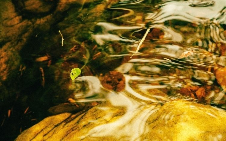 melting - Parque Nacional de Ib - felipefritiz | ello