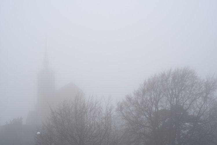 fog - photografy, mist, trees, church - marcus_sohl | ello