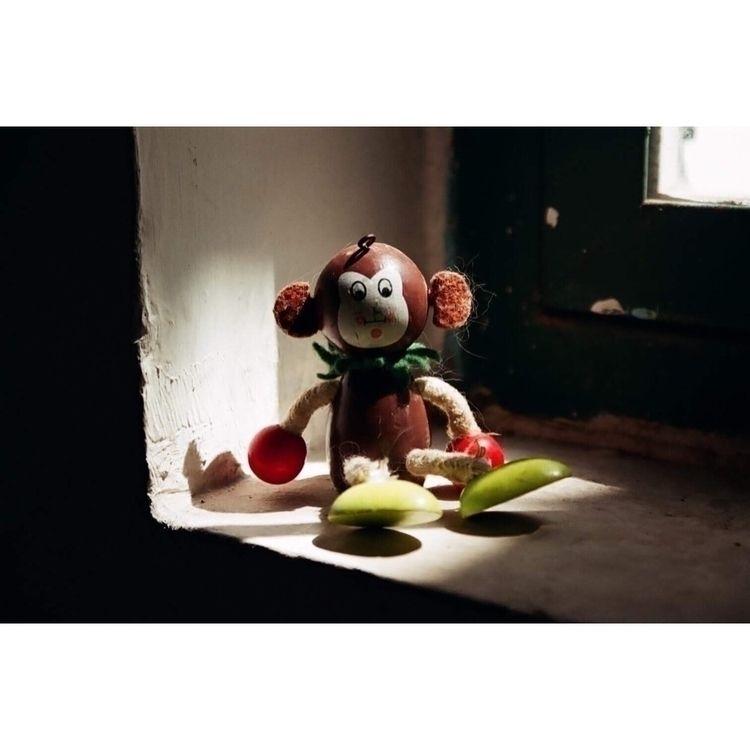 serie Adentro film photography - cuaconavarro | ello