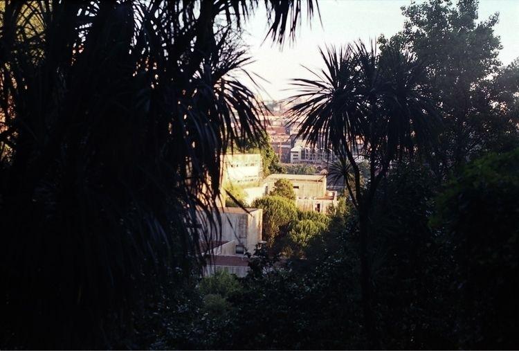 Porto, Portugal - analog, film, 35mm - tatao | ello