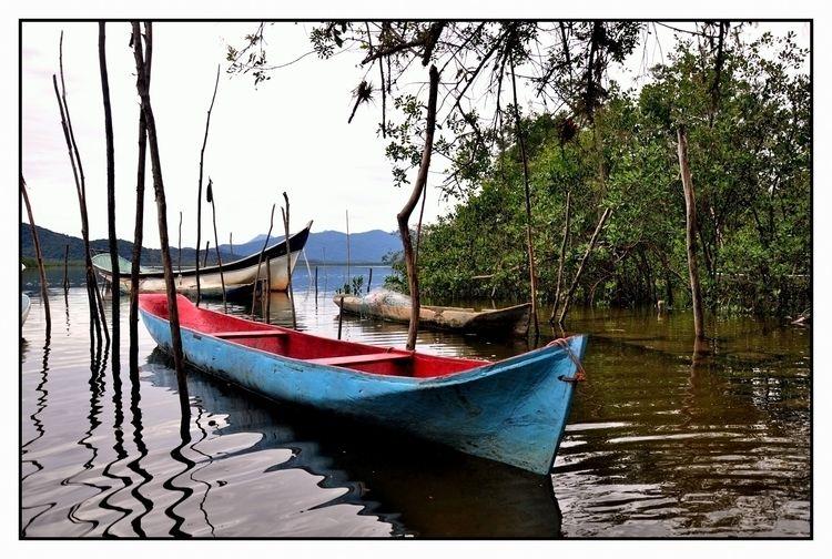 Canoas Caiçaras - canoa, barco, bote - jsuassuna | ello