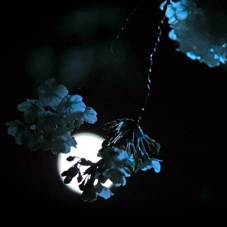 feel small blue world khai drea - dizzymoon | ello