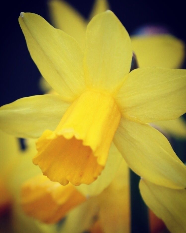 Spring colours London - fgalian | ello