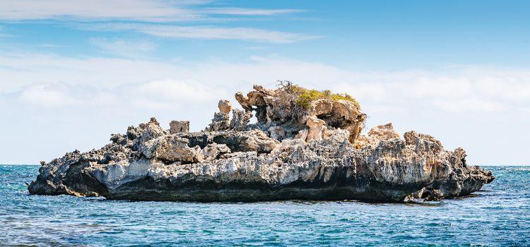 Island. Australia - bradverts | ello