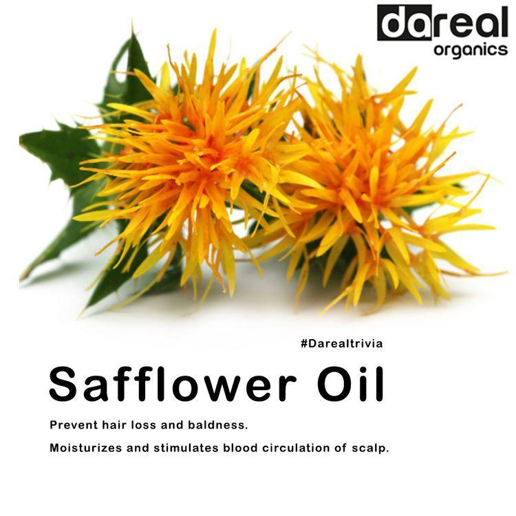 Benefits Safflower Oil bring re - darealorganics | ello
