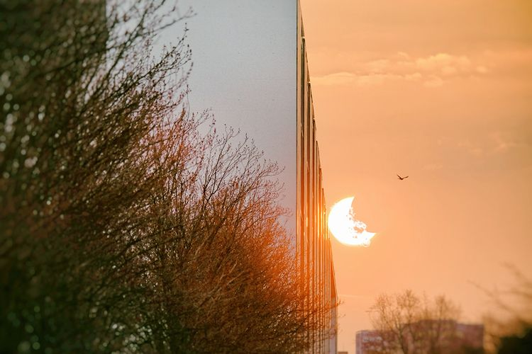eof, eclipse - gr4y1nu | ello