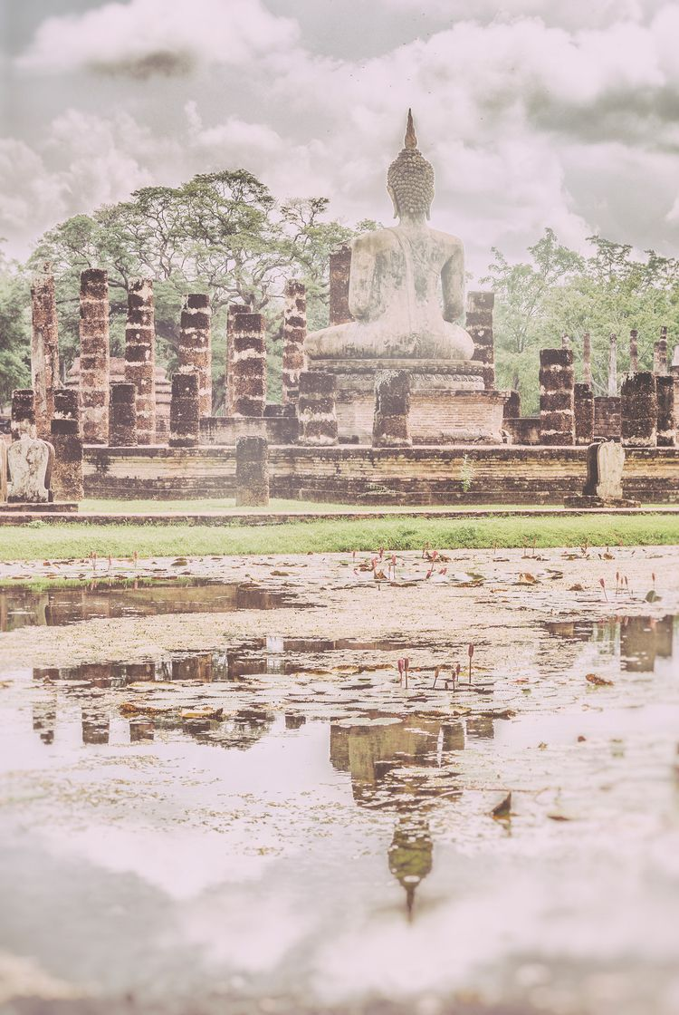 smiling Buddha City Sukhothai - dragonflies - christofkessemeier | ello