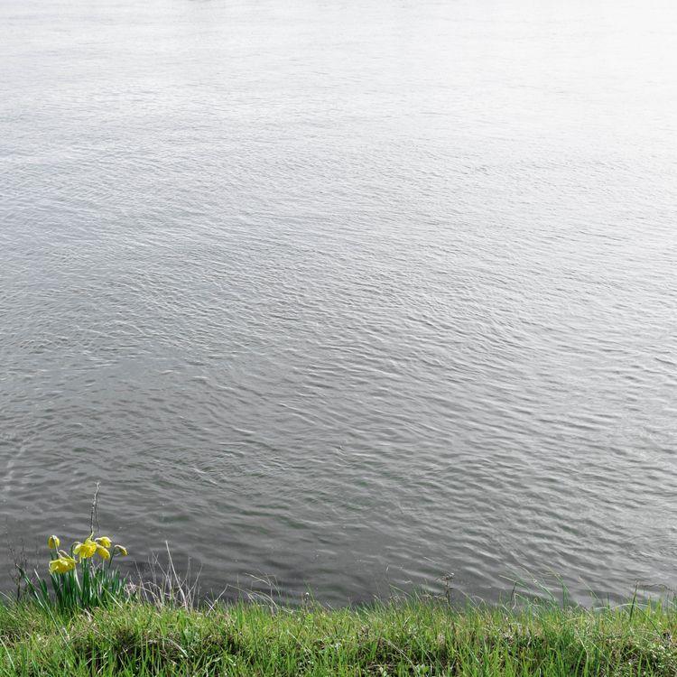 Spring Netherlands springtime - maastricht - erik_schepers | ello