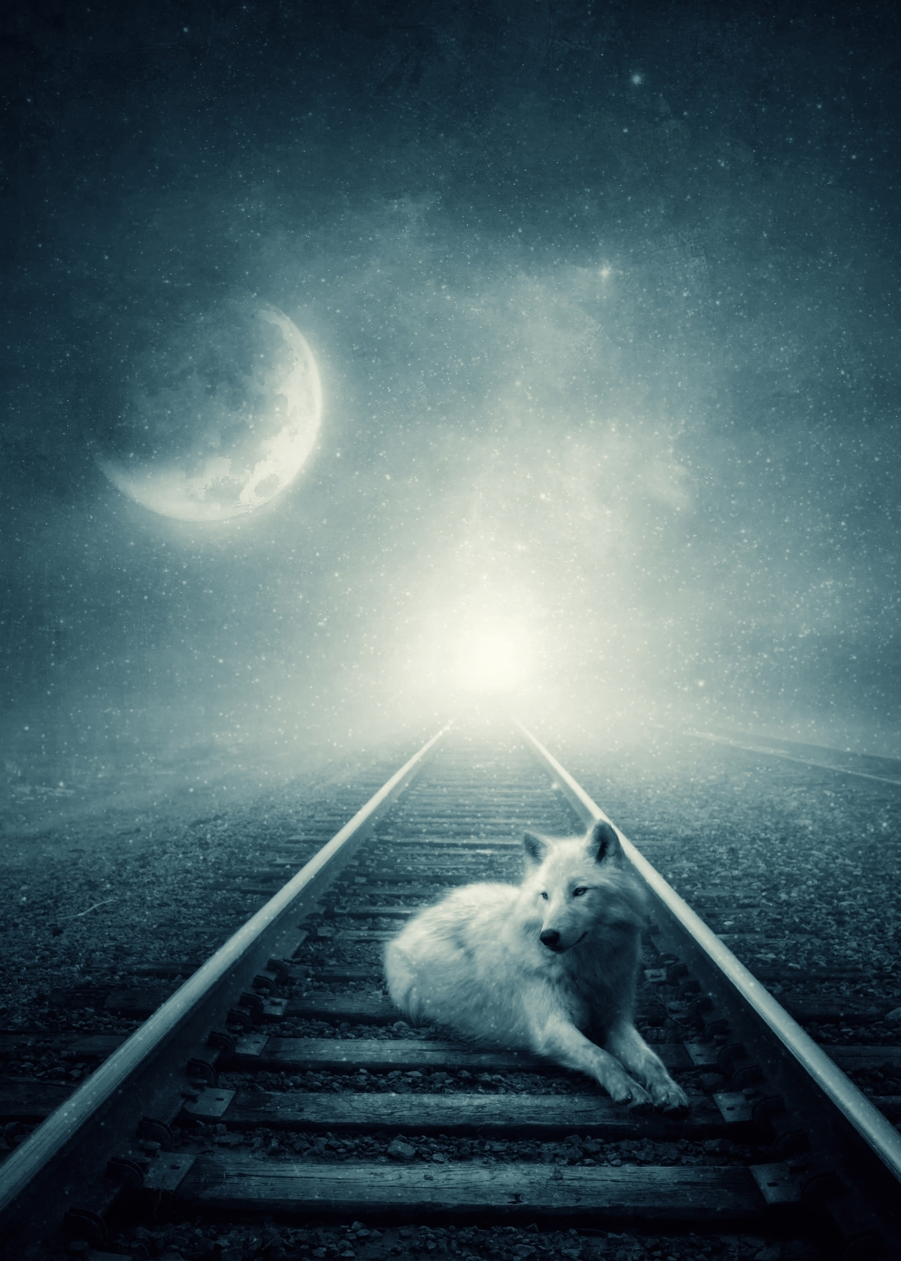 Moon Stories Albulena Panduri S - albulena   ello