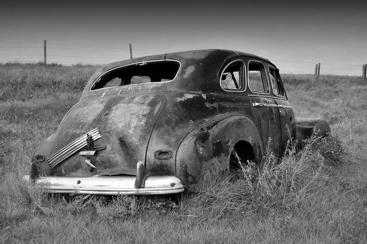 Random summer memories Pontiac  - camwmclean | ello