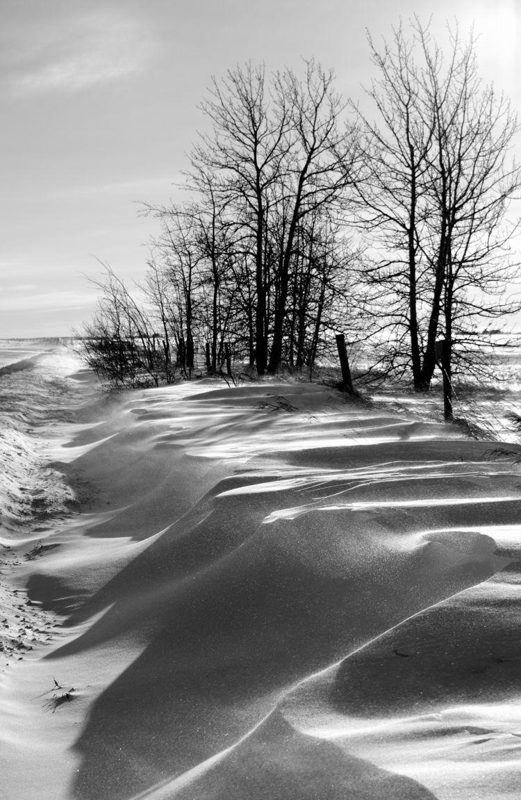 frozen sand dunes, wind sculptu - camwmclean | ello