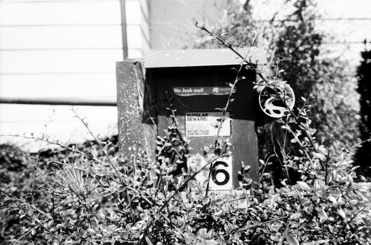 analog, 35mm, film, bw - jazzdecbezhlavy | ello
