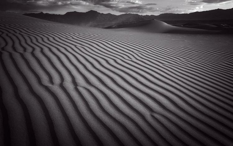 poetry earth dead - landscape, blackwhite - bkleemann | ello