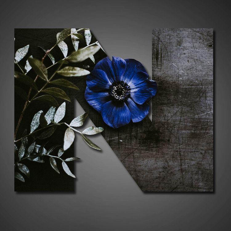 36days_n, 36daysoftype, 36daysoftype05 - tif_flowers | ello