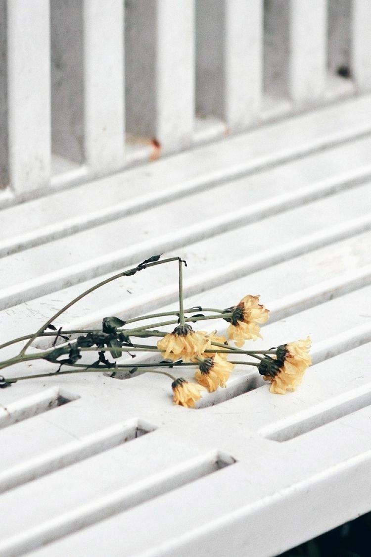 Dead flower, dead soul - bench, white - rakharakids | ello