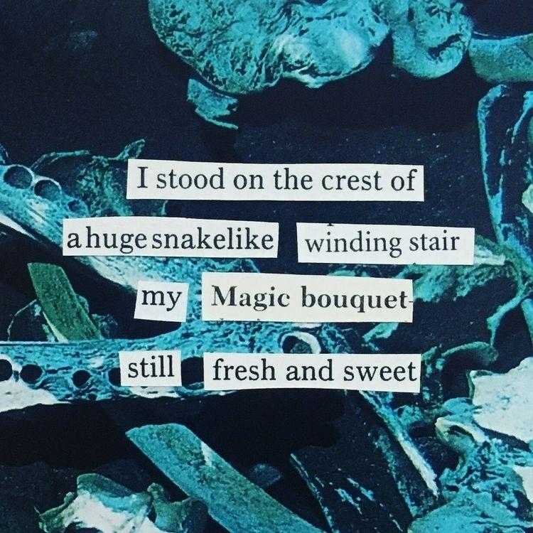 poem, poetry, collage, ellocollage - thistlequiff   ello