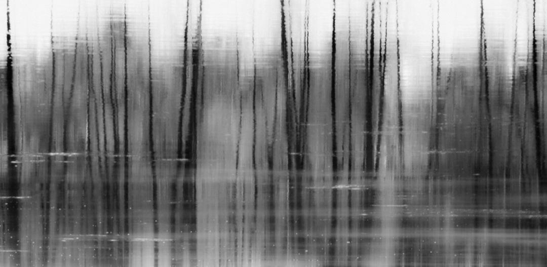 miasma reflections fire - film, digital - voiceofsf   ello