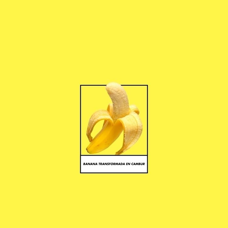transforming bananas cambur - design - cambur   ello