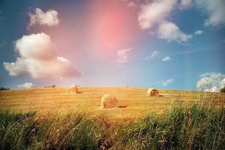Benedetta Falugi - countryside, landscape - benedettafalugi | ello