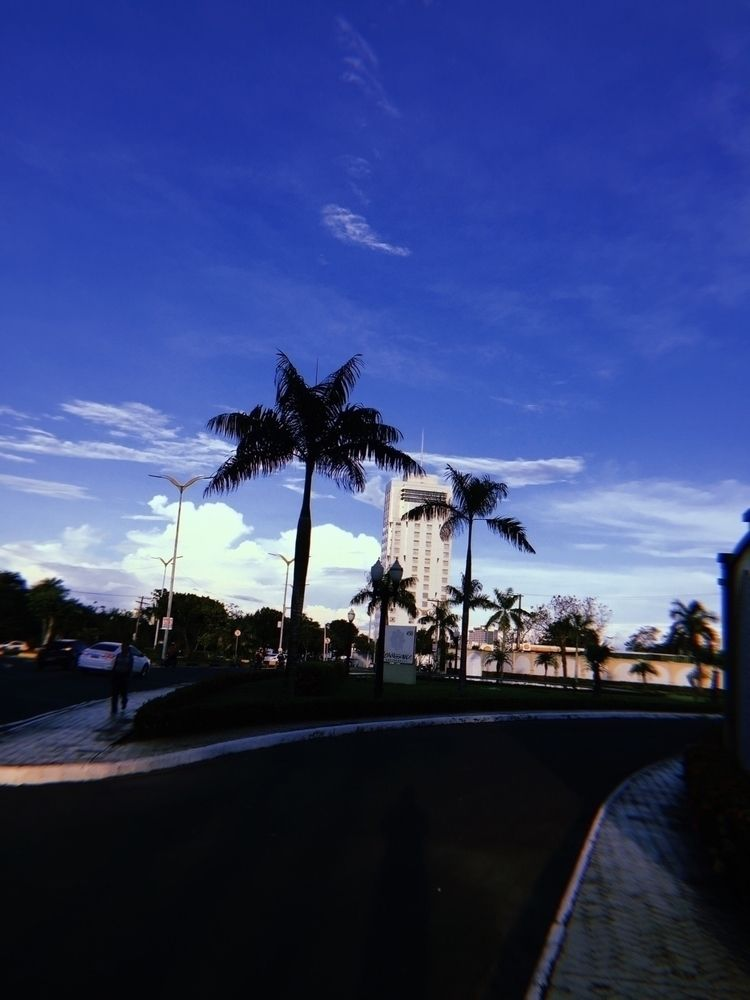 Kali_Uchis_-_Miami.mp3 - photografy - vidal | ello
