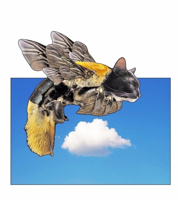 'bee cat digital collage june 2 - cripple_flies_dogs | ello