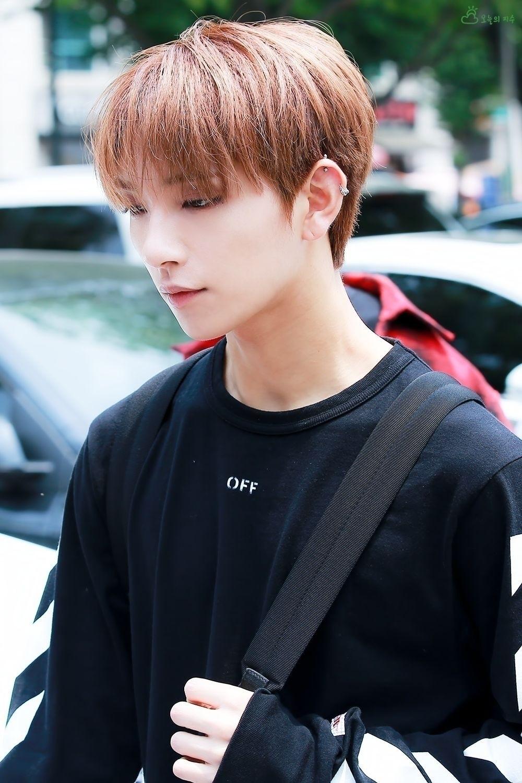 • joshua/jisoo × seventeen - seventeenpics   ello