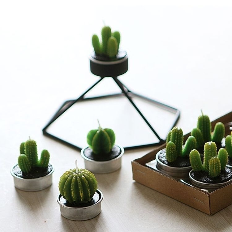 Succulent Cactus Tealight Candl - decorkiki | ello