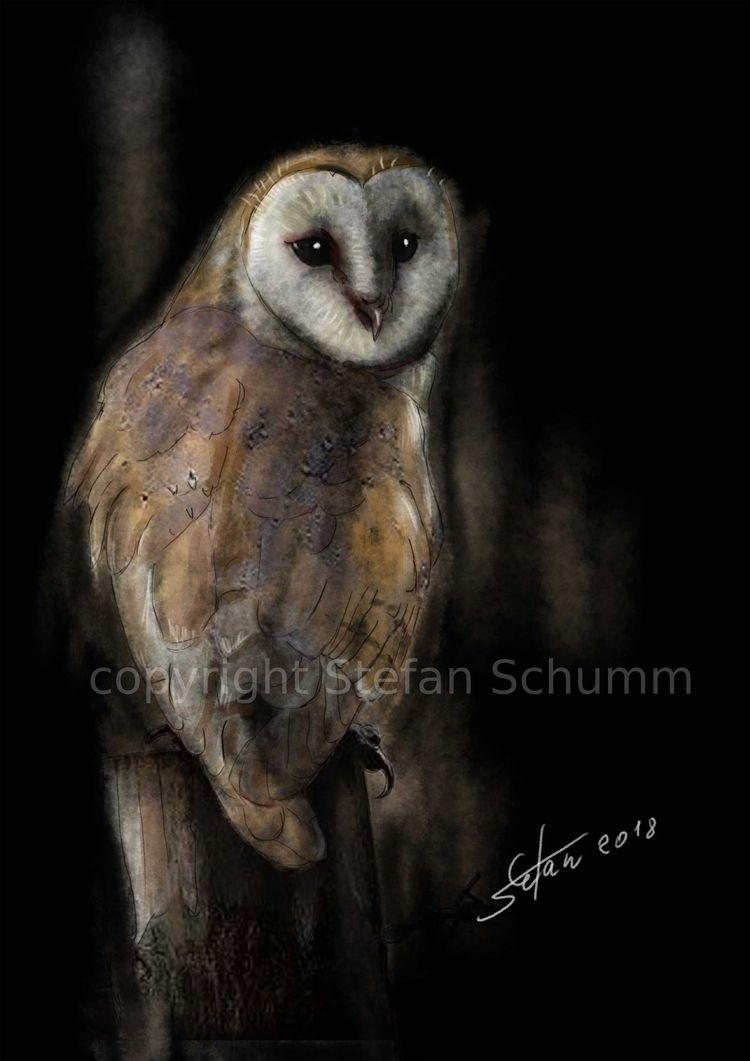 Eule - owl, owls, eulen, mydailysketch - drhoofman | ello