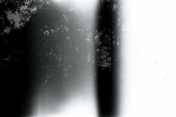 Infinity - photography, analog, 35mm - lxcalghost | ello