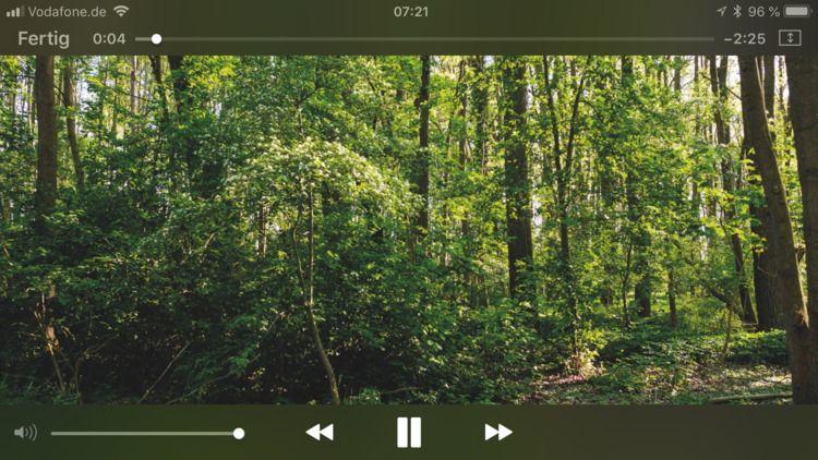 Wieder gehen wir dem SoundPic 5 - royfocke | ello