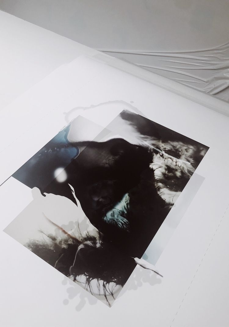 Reef paper, unframed. 80 120 cm - louisemertens | ello
