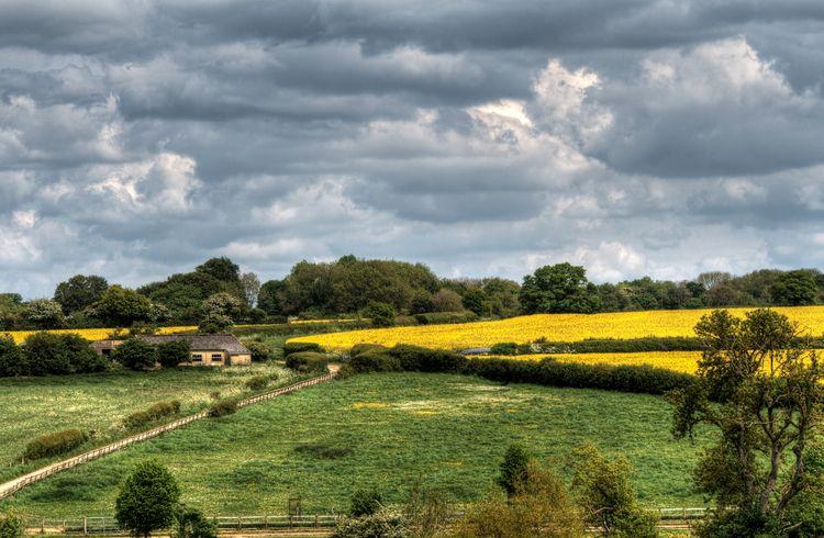 Farmscape, Winchester farmscape - neilhoward | ello