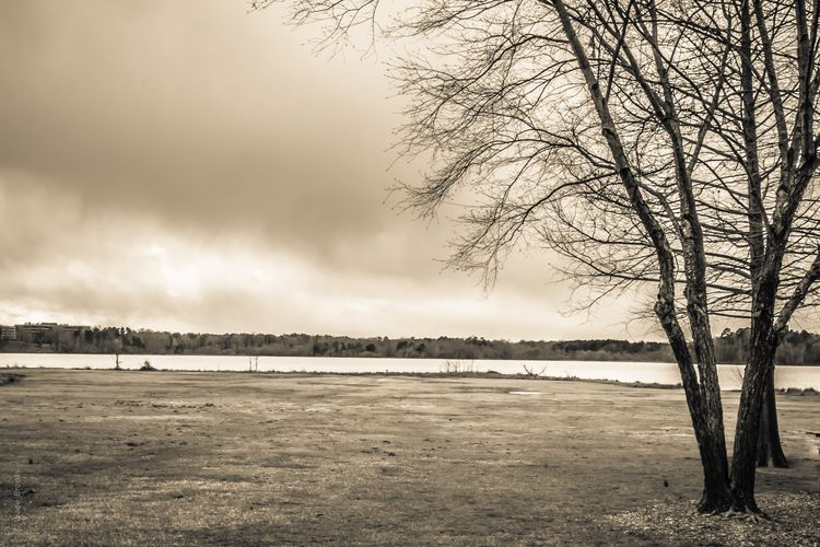 Lake Prints Series - 29 - wadesword | ello