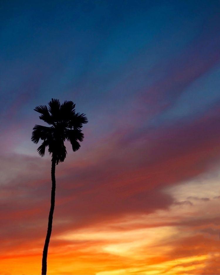 Beach sunsets - sun, color, nikon - laurenannphotography | ello
