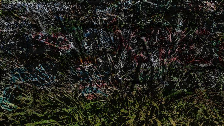 Grafitti bushes - composition, art - headplant | ello