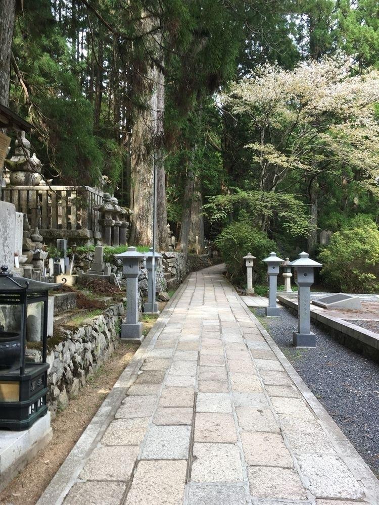 Okunoin - japan, koyasan, travel - thespeck | ello